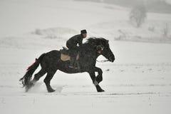 Valea Seaca, Covasna, Rumunia, Luty 24, 2018: Jechać konia podczas gdy na zewnątrz snowing dużo Fotografia Stock