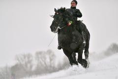 Valea Seaca, Covasna, Rumunia, Luty 24, 2018: Jechać konia podczas gdy na zewnątrz snowing dużo Obraz Stock