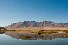 Valei di Altai Fotografia Stock