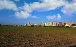 Valencia agriculture fields and skyline Stock Images