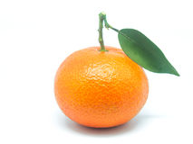 Valencia apelsiner Royaltyfri Bild