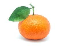 Valencia apelsiner Royaltyfria Foton