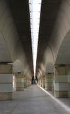 Valencia-Brücke Stockbilder