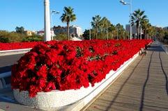 Valencia city, spain stock photography