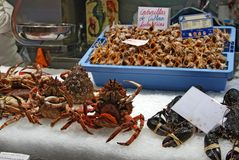 Valencia Food Market image libre de droits