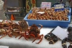 Valencia Food Market royaltyfri bild