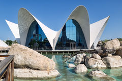 Valencia L'Oceanographic Center. Royalty Free Stock Photos