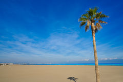 Valencia La Malvarrosa beach arenas Spain. Valencia La Malvarrosa beach arenas palm trees in Spain Stock Photography