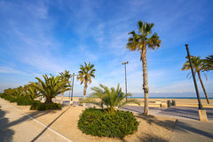 Valencia La Malvarrosa beach arenas Spain. Valencia La Malvarrosa beach arenas palm trees in Spain Stock Image