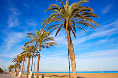 Valencia La Malvarrosa beach palm trees Spain. Valencia La Malvarrosa beach palm trees promenade in Spain Stock Photography