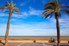 Valencia La Malvarrosa beach palm trees Spain. Valencia La Malvarrosa beach palm trees promenade in Spain Royalty Free Stock Photos