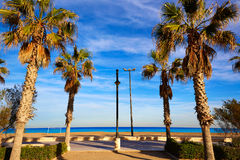 Valencia La Malvarrosa beach palm trees Spain. Valencia La Malvarrosa beach palm trees promenade in Spain Stock Photos