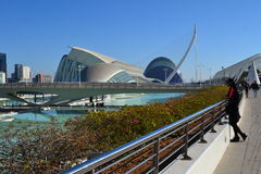 Reina Sofia Valencia view admired by Tourist Girl Stock Photography