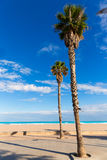 Valencia Malvarrosa Las Arenas beach palm trees Stock Photo