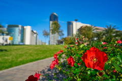 Valencia modern town skyline from the park Royalty Free Stock Photo
