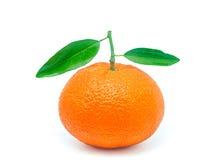 Valencia-Orangen 5 Stockfotos