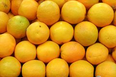 Valencia Oranges Stock Photo