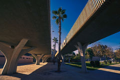 Valencia Pont de fusta bro de Madera Fotografering för Bildbyråer
