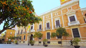 Valencia Spain City Center Architecture Details. Valencia Spain 25 December 2016: City Center Architecture Details with Orange Trees stock video footage