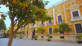 Valencia Spain City Center Architecture Details. Valencia Spain 25 December 2016: City Center Architecture Details with Orange Trees stock footage