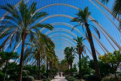 City of Arts and Sciences. Architects Santiago Calatrava and Felix Candela. Valencia, Spain. February 6, 2019. L Umbracle a sculpture garden and landscaped walk stock images