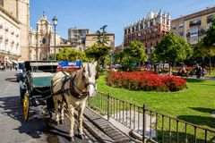 White horse and carriage waiting for tourists. VALENCIA, SPAIN - FEBRUARY 18, 2013: White horse and carriage are waiting calmly for tourists in the downtown Royalty Free Stock Photography