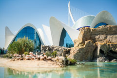 VALENCIA, SPAIN - OCTOBER 2, 2015: Largest oceanographic aquarium in Europe. With pink flamingos sitting on the sand in City of Arts and Sciences Ciudad de las Royalty Free Stock Photography