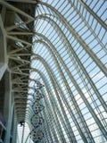 Valencia, Spanien - August 2009: Künste und Wissenschafts-Museum durch Calatrava Lizenzfreie Stockbilder