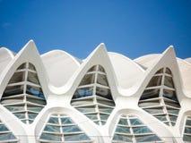 Valencia, Spanien - August 2009: Künste und Wissenschafts-Museum durch Calatrava stockbilder