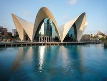 Valencia, Spanien - August 2009: Künste und Wissenschafts-Museum durch Calatrava Lizenzfreie Stockfotos