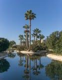 Valencia Spanien parkerar berömda Turia trädgårdar, gjort i den gamla flodbäddGigapan reflexionen i vattnet Royaltyfri Fotografi