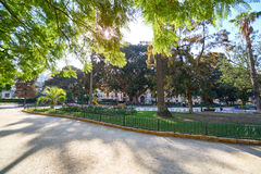 Valencia Turia park gardens Stock Photo
