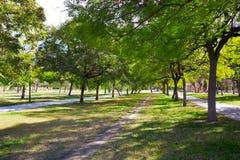 Valencia Turia river park trees and tracks Spain Royalty Free Stock Images