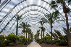 Valencia, urban garden Royalty Free Stock Photography