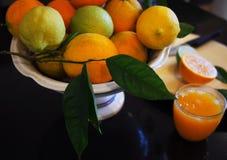 Valencian orange und orange Bl?ten spanien lizenzfreies stockbild