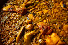 Valencian Paella with chicken and rabbit Stock Image