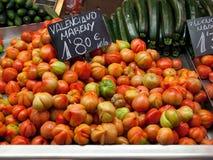 Valenciano mareny Royalty Free Stock Image