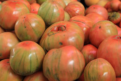 valencianos томатов стоковые изображения