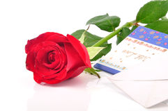 Valentaine rose. Red rose rest on valentine greetings Stock Images