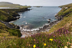 Valentia Ring of Kerry Royalty Free Stock Image