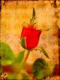 Valentijnskaart van Grunge nam toe Stock Illustratie