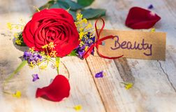 Valentijnskaartendag of van de Moedersdag giftkaart, bon of coupon voor Beauty Spa behandeling stock afbeeldingen