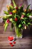 Valentim bonito das tulipas da mola Imagens de Stock Royalty Free