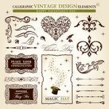 Valentim caligráfico do vintage dos elementos Foto de Stock