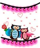 Valentim da coruja Foto de Stock Royalty Free