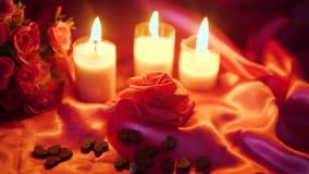 Valentim do partido com queimadura da vela da decoração e metragem da flor video estoque