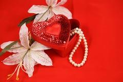 Valentim no vermelho Fotos de Stock