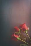 Valentim: Três rosas vermelhas no fundo do metal Foto de Stock Royalty Free