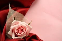 Valentin Card. Valentine's Day theme - a detail of a pink rose with an empty pink card lying on dark red satin fabric Stock Photos