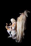 Valentin dag, kupidonman med harpan Royaltyfri Bild